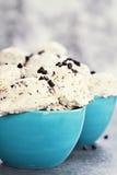 Chocolate Chip Ice Cream fotos de archivo libres de regalías