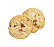 The chocolate chip and macadamia cookies couple isolated Stock Photography