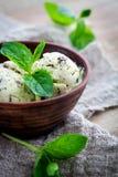 Chocolate chip mint ice cream Stock Photography