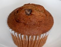 Chocolate Chip Muffin foto de archivo