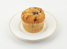Chocolate chip muffin Stock Image