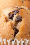 Chocolate Chip Muffin. Clo9se-Up royalty free stock image
