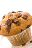 Chocolate chip muffin. On a plate focus on front Stock Image