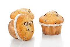 Chocolate chip muffin. Fresh chocolate chip muffin close up Stock Photos