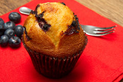 Chocolate chip muffin Royalty Free Stock Images