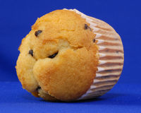Chocolate chip muffin. Whole chocolate chip muffin on blue background Stock Photos