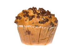 Chocolate Chip Muffin Stock Photos