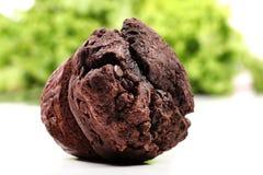 Chocolate chip muffin. Beautiful shot of chocolate chip muffin Stock Photos