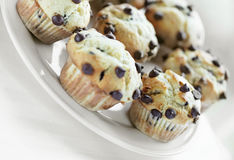 Chocolate chip muffin breakfast Stock Photography
