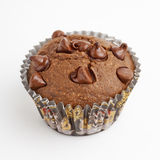 Chocolate chip muffin cupcake Royalty Free Stock Photos