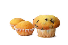 Chocolate Chip Muffin and cupcakes. Chocolate Chip Muffin and two cupcakes isolated on white background stock image