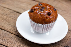Chocolate chip muffin. Stock Images