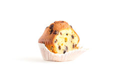 Chocolate chip muffin isolated on white. One chocolate chip muffin isolated on white Royalty Free Stock Photos