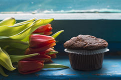 Chocolate chip muffin and tulips Stock Photos