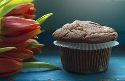 Chocolate chip muffin and tulips. Close-up Royalty Free Stock Image