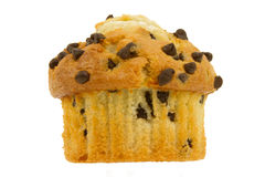 Chocolate Chip Muffin on a White Background Stock Photos