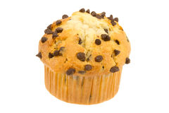 Chocolate Chip Muffin with White Background Stock Photography