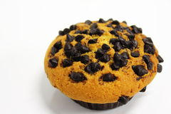 Chocolate chip muffin on  white background Stock Photography