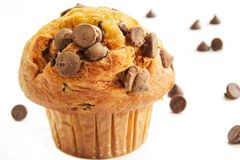 Chocolate chip muffin on white background Stock Photo