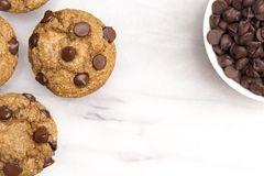 Chocolate Chip Muffins imagens de stock