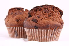 Chocolate chip muffins Royalty Free Stock Photography