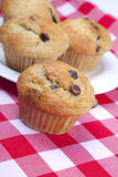 Chocolate Chip Muffins. Homemade chocolate chip muffins on red gingham Royalty Free Stock Images