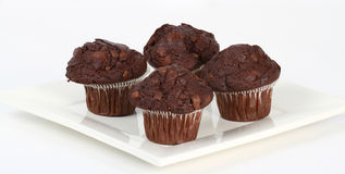 Chocolate chip muffins Stock Photos