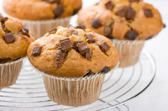 Chocolate chip muffins. On a cooling rack shallow depth of field Stock Photo