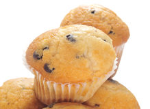 Free Chocolate Chip Muffins Stock Images - 24672354