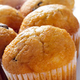 Chocolate chip muffins. Closeup of some delicious chocolate chip muffins Stock Image