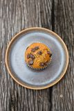 Chocolate chip muffins. On wooden background Stock Image