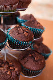 Chocolate chip muffins close up photo Stock Image