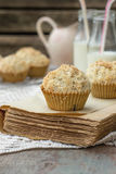 Chocolate chip muffins with coconut streusel Stock Images