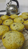 Chocolate Chip Muffins da banana Fotos de Stock Royalty Free