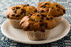 Free Chocolate Chip Muffins On Plate Royalty Free Stock Image - 60243466
