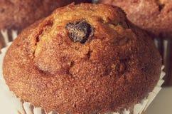 Chocolate Chip Muffins stock photo