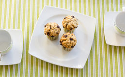 Chocolate chip muffins on white plate and green striped tableclo. Three chocolate chip muffins on white plate and green striped tablecloth at breakfast Stock Photo