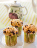 Chocolate chip muffins on white plate and green striped tableclo. Three chocolate chip muffins on white plate and green striped tablecloth at breakfast Stock Image