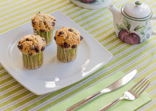 Chocolate chip muffins on white plate and green striped tableclo. Three chocolate chip muffins on white plate and green striped tablecloth at breakfast Royalty Free Stock Photography