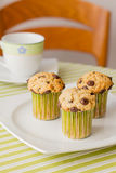 Chocolate chip muffins on white plate and green striped tableclo. Three chocolate chip muffins on white plate and green striped tablecloth at breakfast Stock Photography