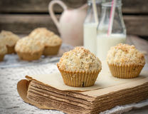 Chocolate Chip Muffins With Coconut Streusel Stock Photography