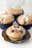 Chocolate chip muffins on a wooden board Royalty Free Stock Images