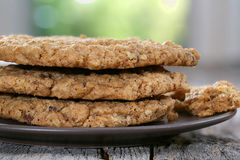 Chocolate chip oatmeal walnut cookies Royalty Free Stock Photos