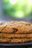 Chocolate chip oatmeal walnut cookies Royalty Free Stock Photography
