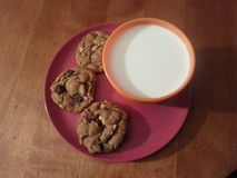 Chocolate Chip and peanut cookies. Freshly baked cookies with milk Royalty Free Stock Photos