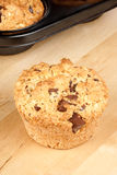 Chocolate chip and pine nut muffin Royalty Free Stock Photos