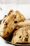 Chocolate Chip Scones Stock Images
