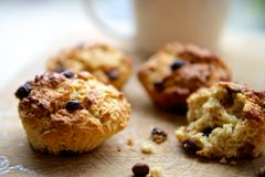 Chocolate Chip Scones on a Wooden Surface Stock Photography
