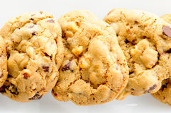 Chocolate chip and walnut cookies Stock Image