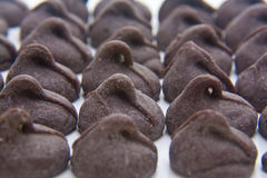 Chocolate chips. Macro shot of rows of chocolate chips Stock Images